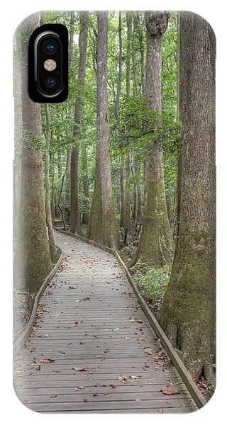 IPhone Case featuring the photograph Congaree 2017 03 by Jim Dollar