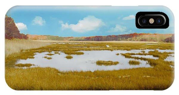 Connecticut Salt Water Marsh IPhone Case