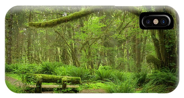 Contemplative Rain Forest IPhone Case