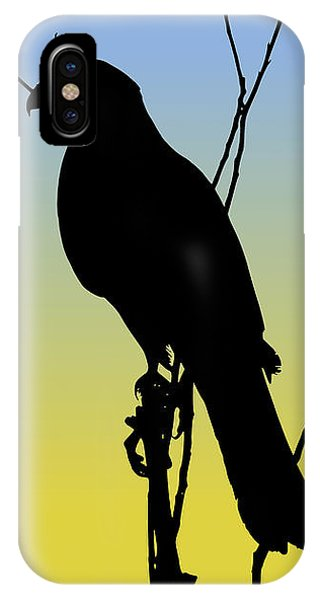 Coopers Hawk Silhouette At Sunrise IPhone Case