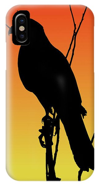 Coopers Hawk Silhouette At Sunset IPhone Case