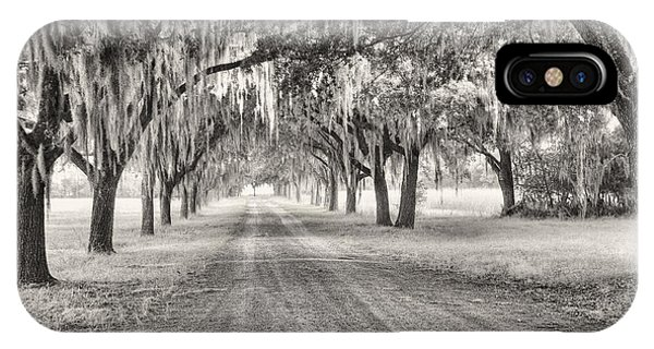 Coosaw Plantation Avenue Of Oaks IPhone Case