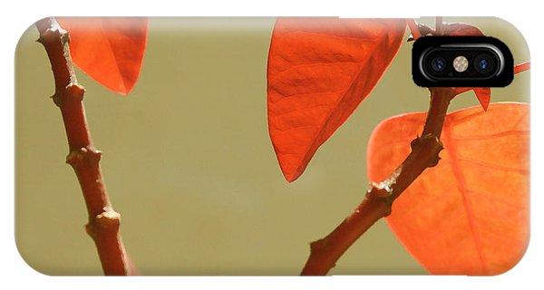 Copper Plant IPhone Case