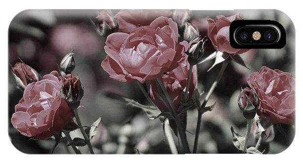 Copper Rouge Rose In Almost Black And White IPhone Case