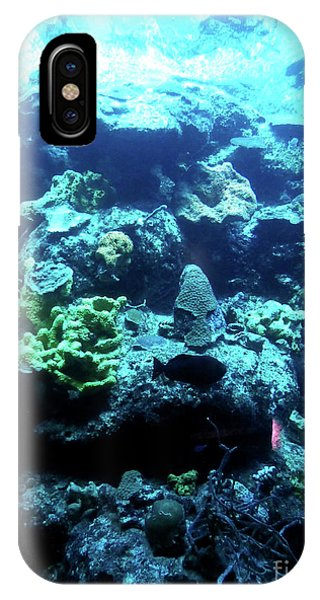 IPhone Case featuring the photograph Coral Art 4 by Francesca Mackenney