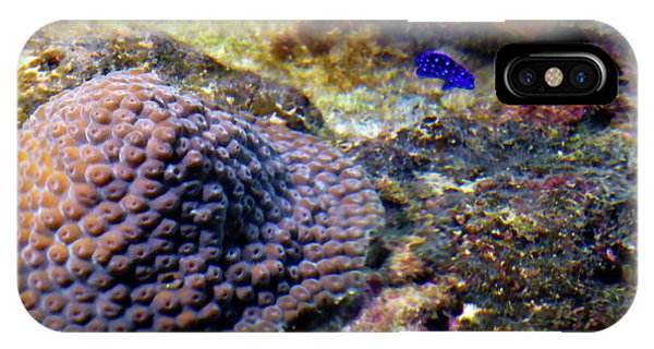 IPhone Case featuring the digital art Coral Art Cu 3 by Francesca Mackenney