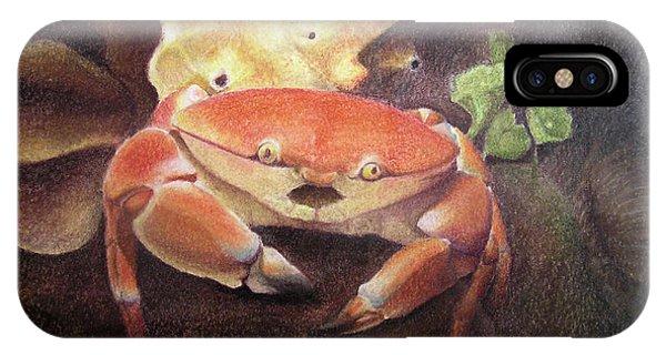Coral Crab IPhone Case
