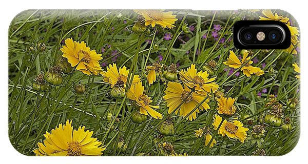 Coreopsis And Mexican Heather IPhone Case