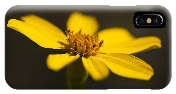 Coreopsis Verticillata IPhone Case