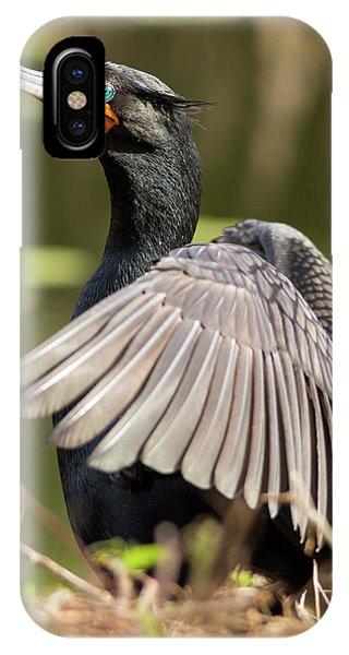 Cormorant Portrait IPhone Case