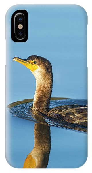 Cormorant Reflection IPhone Case