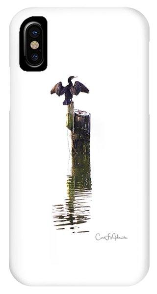 Cormorant Sunning IPhone Case