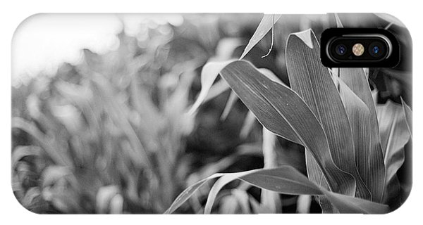 IPhone Case featuring the photograph Corn In Black And White by Sandy Adams