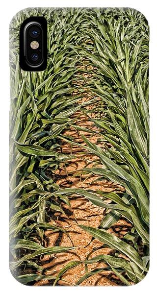 Corn Row IPhone Case