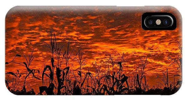 Corn Under A Fiery Sky IPhone Case