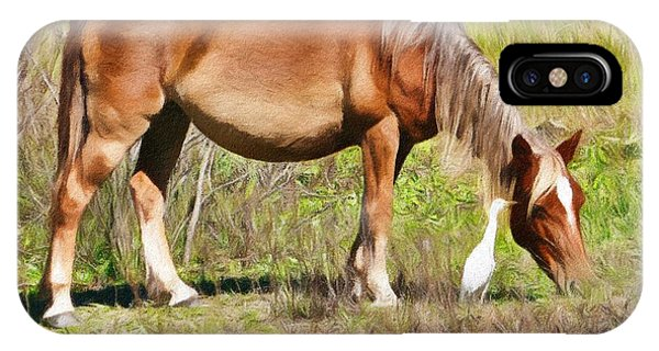 Corolla's Wild Horses IPhone Case