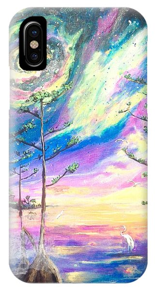 Cosmic Florida IPhone Case
