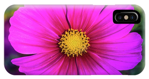 IPhone Case featuring the photograph Cosmos by John Brink