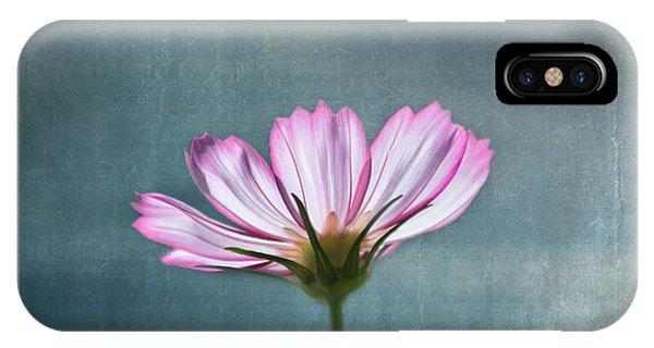 Flower Gardens iPhone Case - Cosmos - Summer Love by Kim Hojnacki