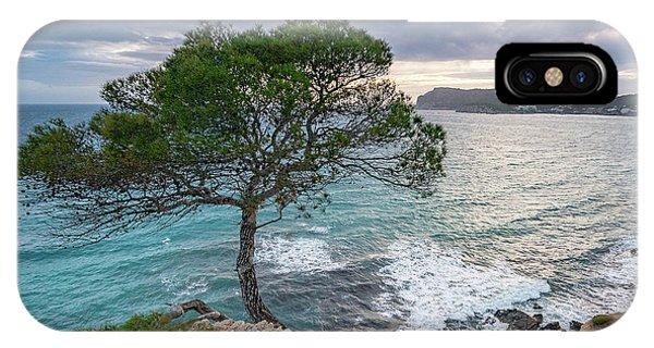 Costa De La Calma Tree IPhone Case