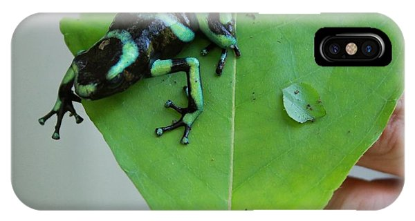 Costa Rican Poison Dart Frog IPhone Case