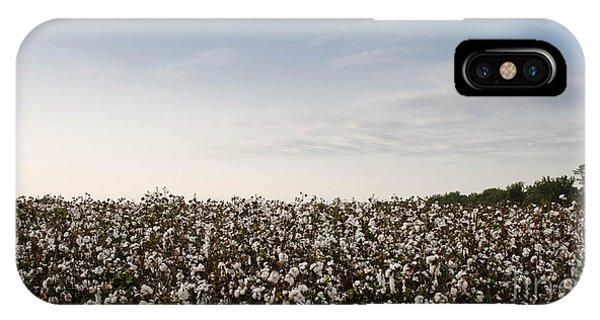 Cotton Field 2 IPhone Case