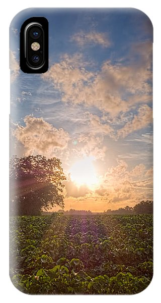 Cotton Field Sunset IPhone Case