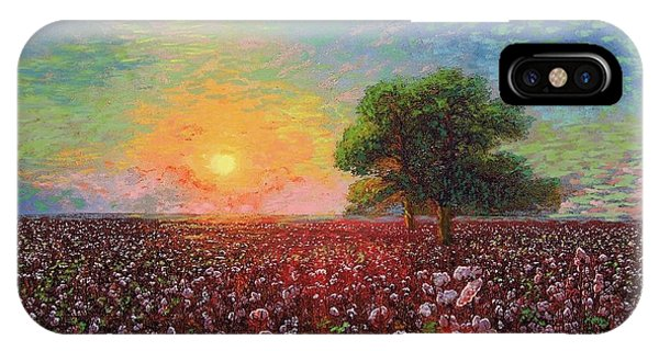 Oklahoma iPhone Case - Cotton Field Sunset by Jane Small