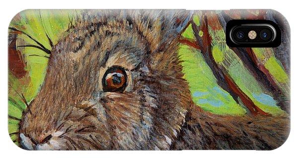 Cotton Tail Rabbit IPhone Case