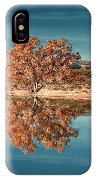 Cotton Wood Tree  IPhone Case