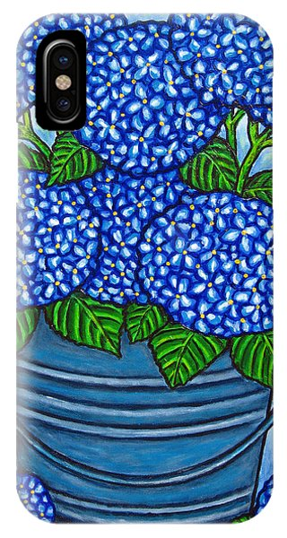 Country Blues IPhone Case