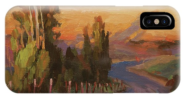 Tan iPhone Case - Country Road by Steve Henderson
