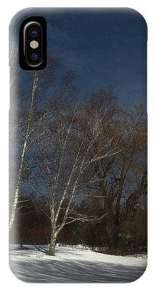 Country Roadside Birch IPhone Case