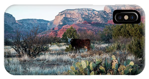 Cow At Red Rock IPhone Case