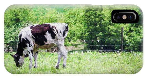 Cow Grazing IPhone Case