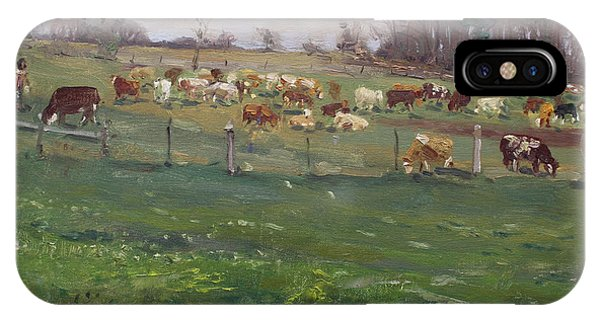 Georgetown iPhone Case - Cows In A Farm, Georgetown  by Ylli Haruni