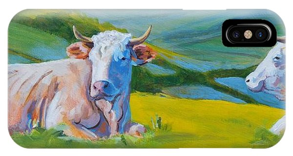 Cows Lying Down In Devon Hills IPhone Case