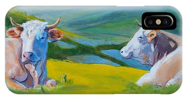 Cows Lying Down In Devon Hills IPhone Case