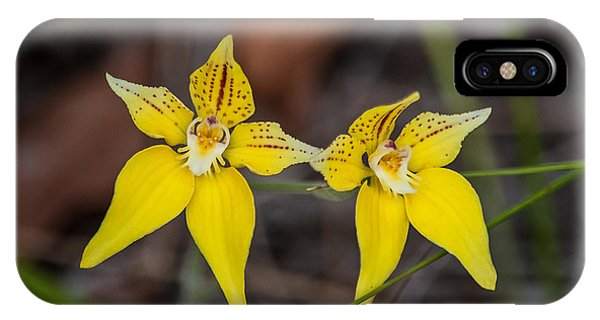 Cowslip Orchid Australia IPhone Case