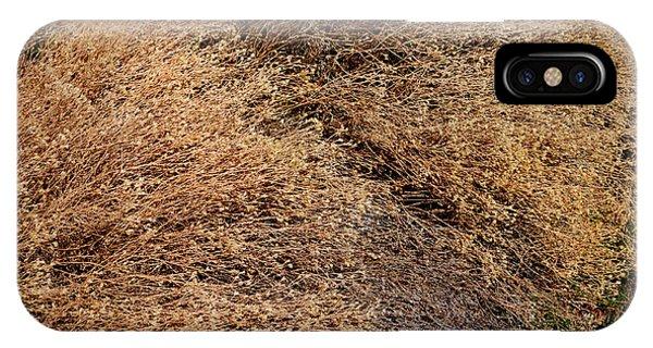Coyote Brush IPhone Case