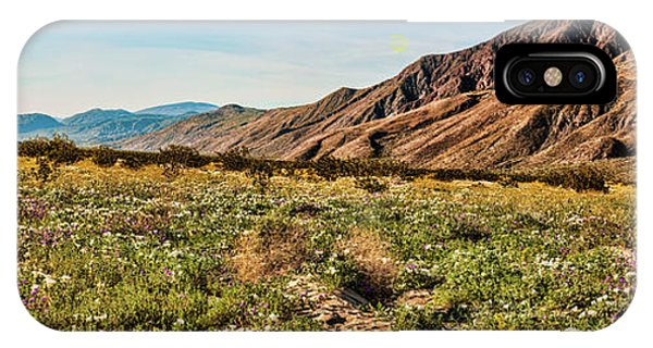 Coyote Canyon Meadow View IPhone Case