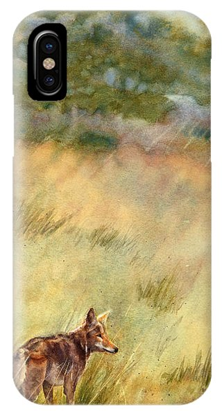 Coyote Santa Rosa Plateau IPhone Case