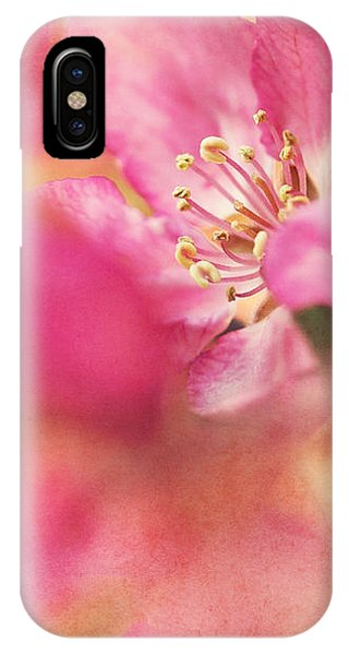 Crab Apple Blossoms II IPhone Case