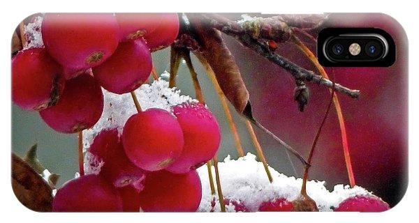 Crab Apples Snow IPhone Case