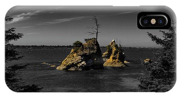 Crab Rock IPhone Case