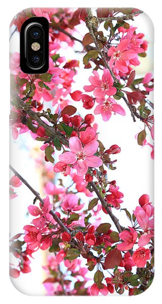 IPhone Case featuring the photograph Crabapple Beauty by Rick Morgan