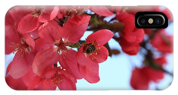 Crabapple Bees IPhone Case