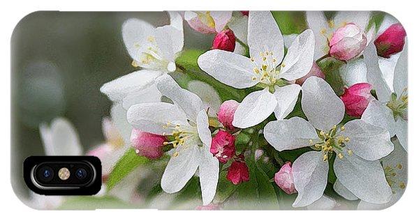 Crabapple Blossoms 12 - IPhone Case