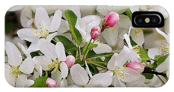 Crabapple Blossoms 5 IPhone Case