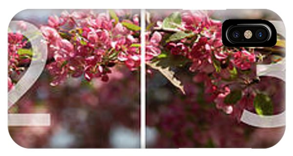 Crabapple In Spring Panoramic Map IPhone Case